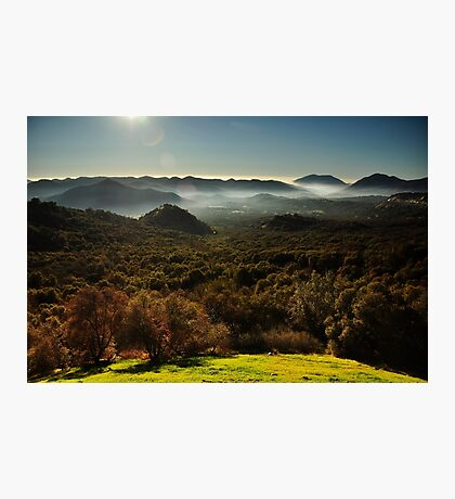 Sequoia National Park Photographic Print