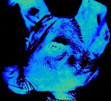 Sunwatcher: Laika Blue by Sunwatcher
