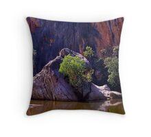 Windjana Gorge_Kimberley W.A Throw Pillow