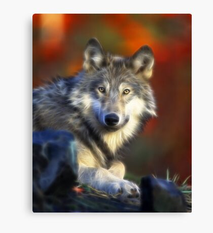 Lonely Wolf Canvas Print
