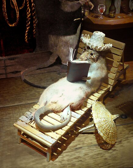 Water Rat enjoying Shipboard Life by Roz McQuillan