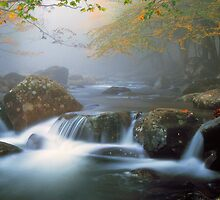 MOUNTAIN STREAMS by Chuck Wickham