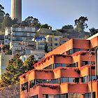 Coit Tower San Francisco by Paul J. Owen