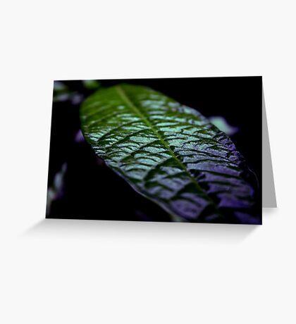 Natural Solar Cells Greeting Card