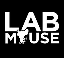 Lab Mouse by moombax