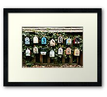 You've Got Mail....but where the heck is it? Framed Print