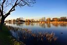 River  the Vecht by AnnieSnel