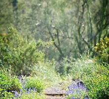 The Lupin Way  by soulfulpix