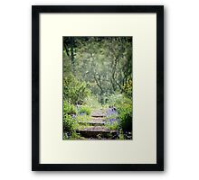 The Lupin Way  Framed Print