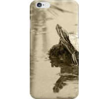 Painted Turtle on Mud in a Marsh iPhone Case/Skin