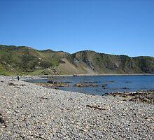 Makara Beach, New Zealand  by SamanthaT