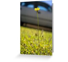 Sunshine in Suburbia Greeting Card
