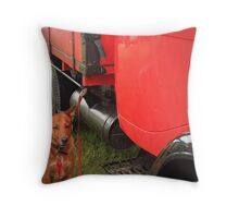 "aka ""protector of red truck..."" Throw Pillow"