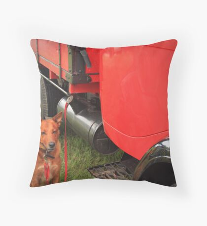 """aka """"protector of red truck..."""" Throw Pillow"""