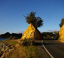 Rocky Road by Hayley Watson