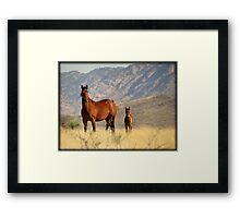 Mountain Mama  Framed Print