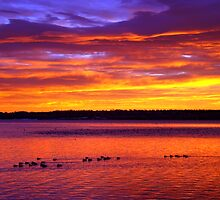 Red Warmth Of A Winter Sunrise by John  De Bord Photography