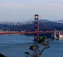 Golden Gate Bridge by Laurie Puglia
