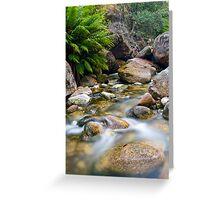 Eurobin Creek cascades 3 Greeting Card