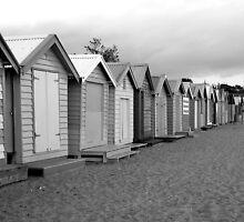 Beach Shacks by laura h