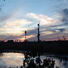 Bird Clouds at Sunset by May Lattanzio