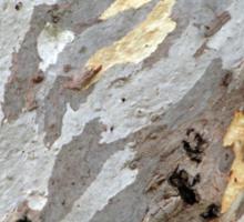 Gum tree bark 11 Sticker