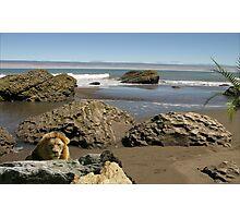 1107-Mozambique Shoreline Photographic Print