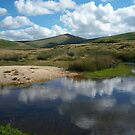 Dartmoor: River Taw Reflections by Rob Parsons