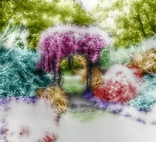 Arbor Entry Into A Rainbow Garden - Infrared Series by Jane Neill-Hancock