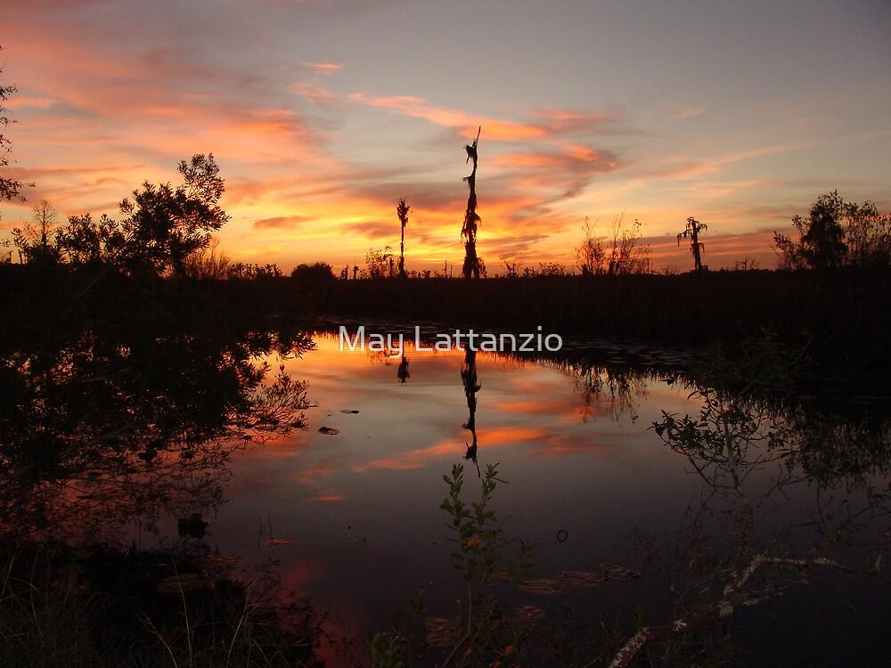 Sunset no. 8 by May Lattanzio