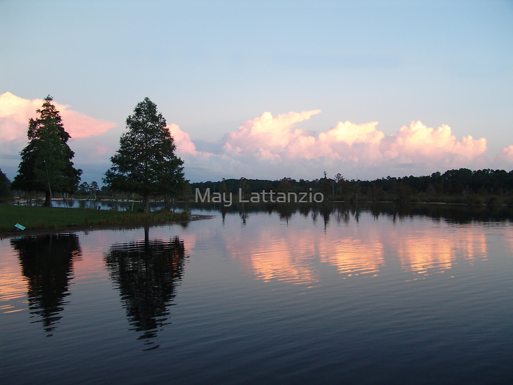 Clouds of Pink by May Lattanzio