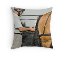 Tail end charlie Throw Pillow