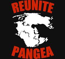 Reunite Pangea Funny Geek Nerd Unisex T-Shirt