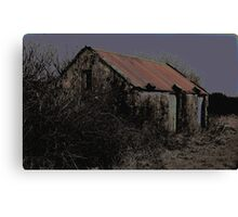 Old Irish Shed Canvas Print