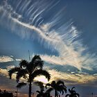 Boca Raton Sunset by LizzieMorrison