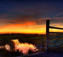 Simply Sunset by FunkySlug