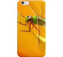 Majestic Green Darner Dragonfly iPhone Case/Skin