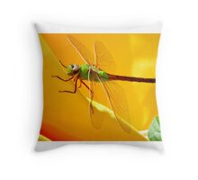 Majestic Green Darner Dragonfly Throw Pillow