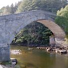 Bridge over River South Tyne. by Edward Denyer