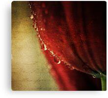 tears may fall... Canvas Print