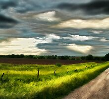 Early Morning Spring Storm by Patrick Hickey
