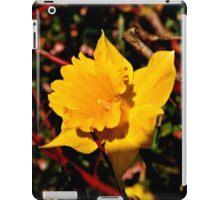 Sun on the Daffodils iPad Case/Skin