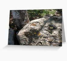 Fall leaves, tree bark, and stone Greeting Card