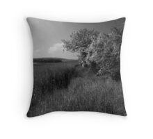 Northumberland Hedgerow Throw Pillow