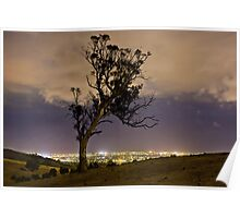 Brown Hill Tree Poster
