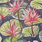 Waterlilies XI by Alexandra Felgate