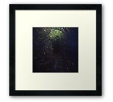 The Dark Thicket of Life Framed Print