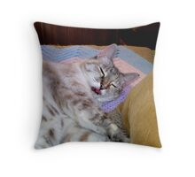 What, can't you see I'm sleeping?l  Throw Pillow