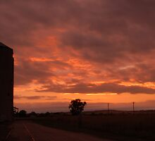 A Silo Morning by Lanny Edey