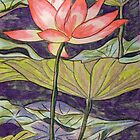Lily/Lotus by Alexandra Felgate